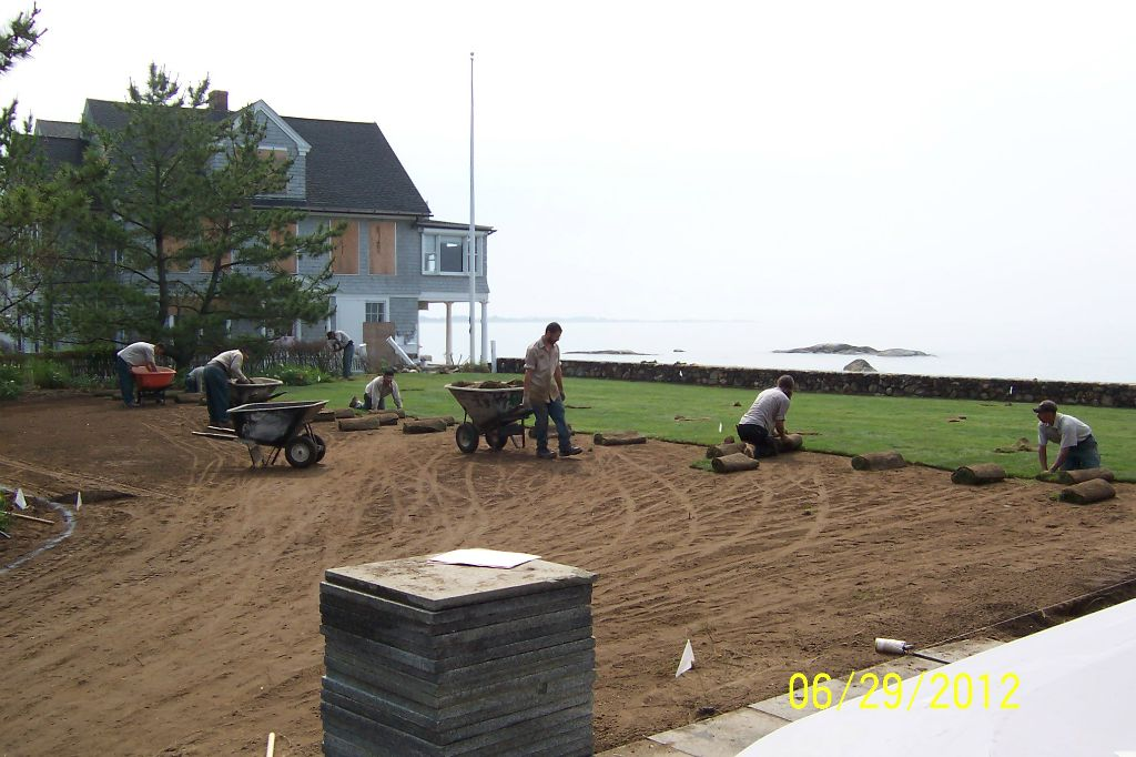 New sod and plantings going in